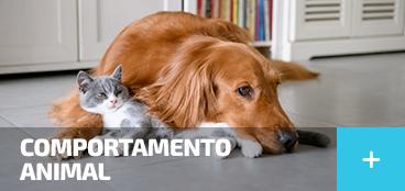 Animais de Estimação - Comportamento Animal