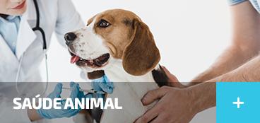 Animais de Estimação - Saúde Animal